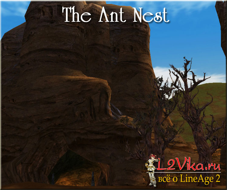 The Ant Nest - Муравьиное Гнездо - L2Vika.ru
