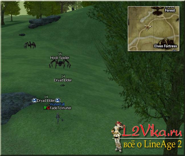 Dryad Elder - Квест на первую профессию для Элементал Саммонера и СпеллСингера Path to an Elven Wizard - L2Vika.ru