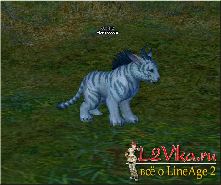 Alpen Cougar A ID 21489 - Lvl 69 - L2Vika.ru