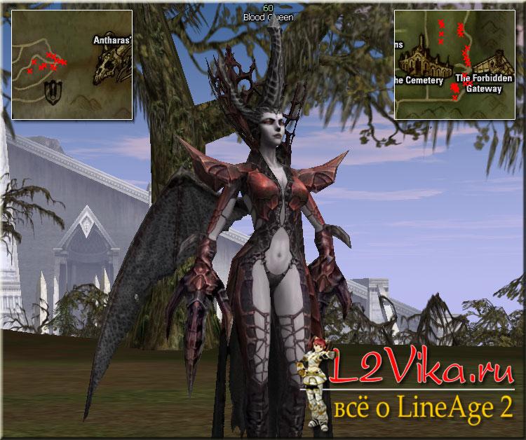 Blood Queen Lvl 60 - L2Vika.ru