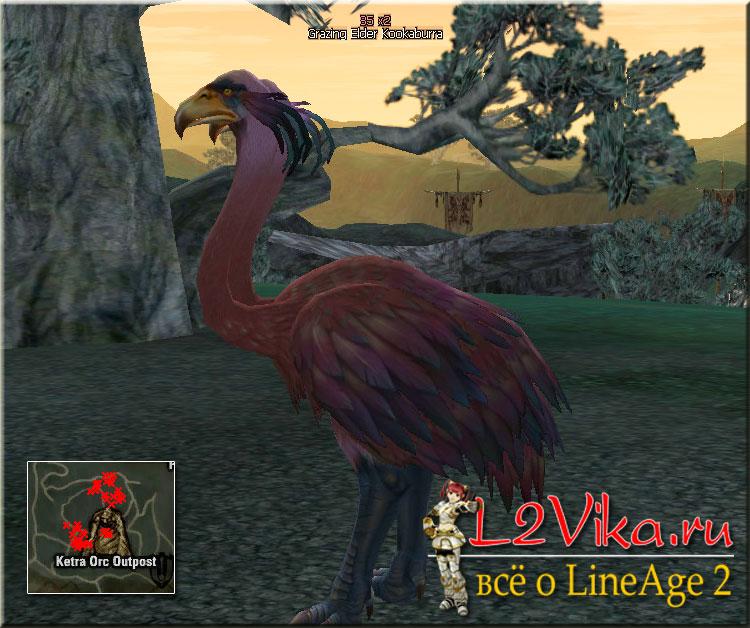 Grazing Elder Kookaburra - Lvl 80 - L2Vika.ru