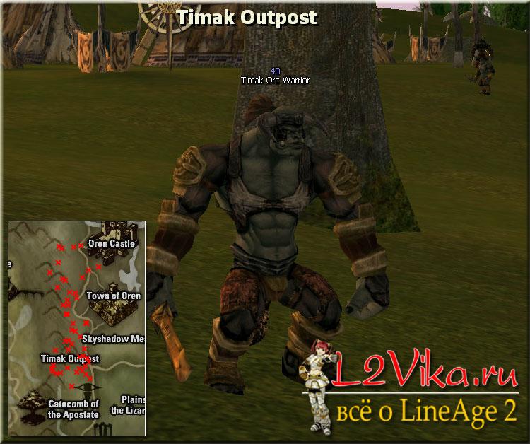 Timak Orc Warrior - Lvl 43 - L2Vika.ru