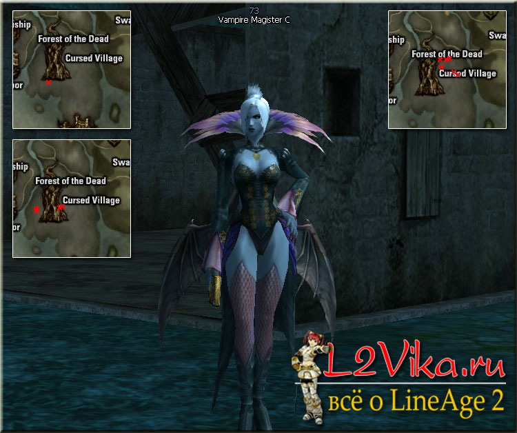 Vampire Magister Lvl 73 - L2Vika.ru
