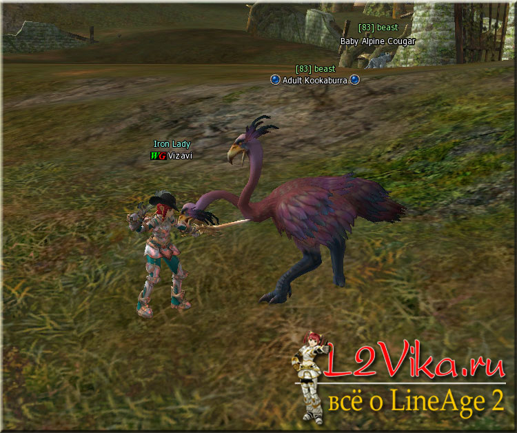 Adult Kookaburra Lvl 83 в Lineage 2 High Five - L2Vika.ru