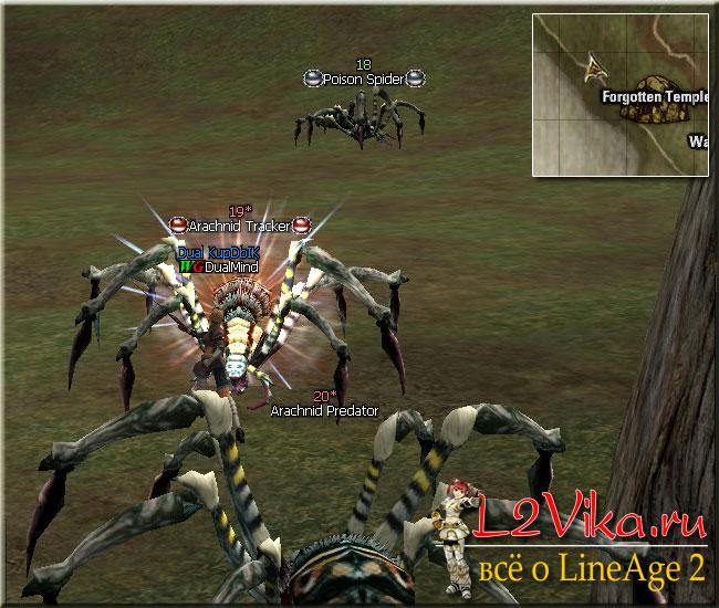 Poison Spider и Arachnid Tracker - Квест на первую профессию для Дарк Авенджера и Паладина Path to a Human Knight - L2Vika.ru