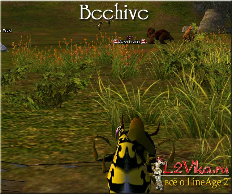 Beehive - Улей