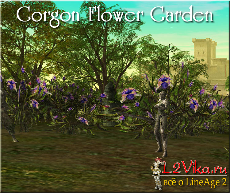 Gorgon Flower Garden - Цветочный сад Медузы Горгоны - L2Vika.ru