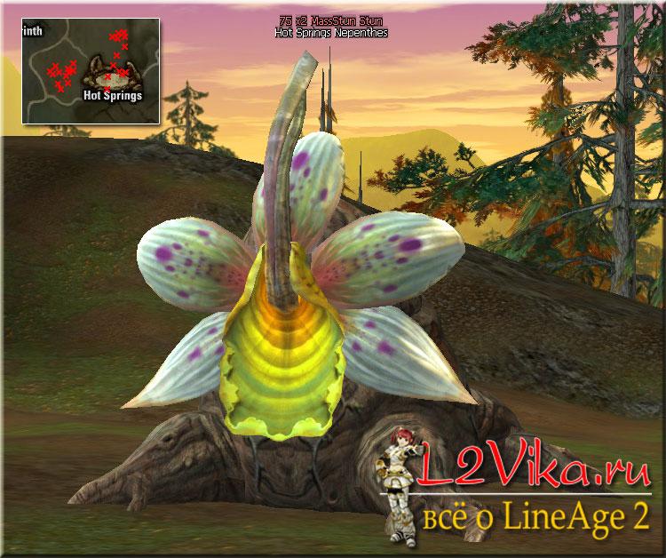 Hot Springs Nepenthes - Lvl 75 - L2Vika.ru
