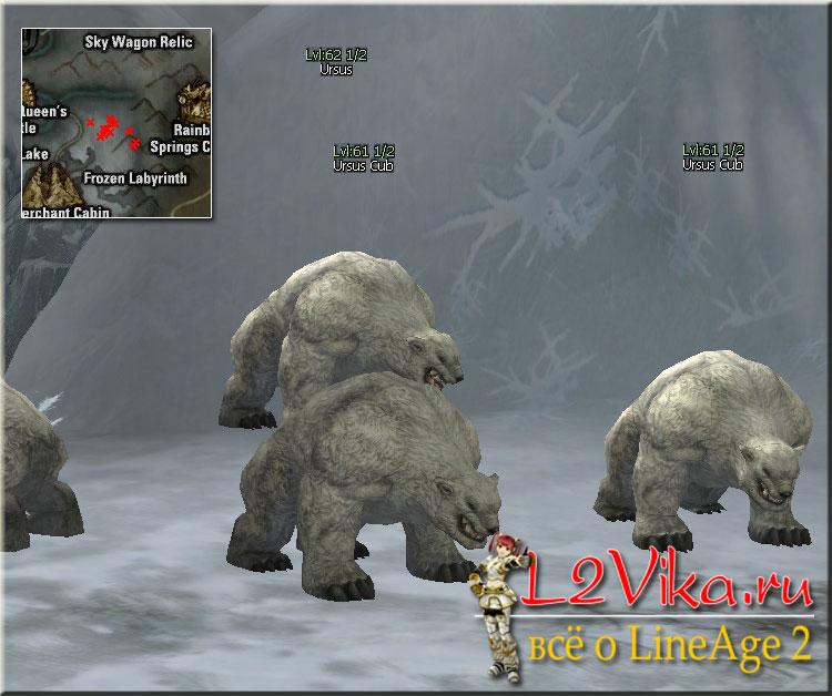 Ursus Cub Lvl 61 - L2Vika.ru